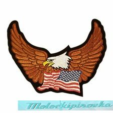 Eagle Spreading Wings with United States Flag below Medium Size Patch