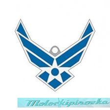 Key Chain USAF Logo
